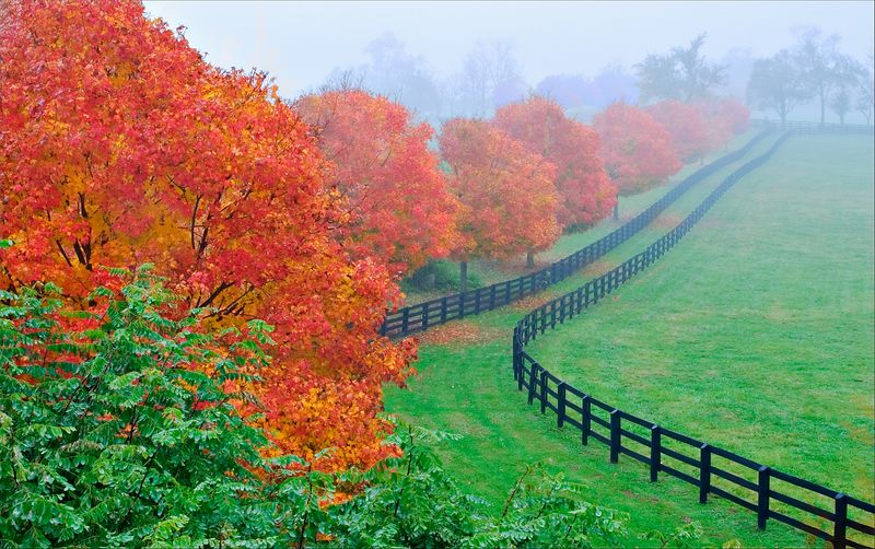 """Kentucky Morning""<br /> Bluegrass Driving Tour<br /> Lexington, KY"