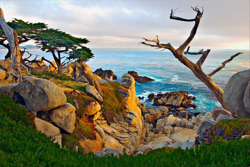 """The View from Ghost Tree""<br /> 17 Mile Road<br /> Pebble Beach, CA"