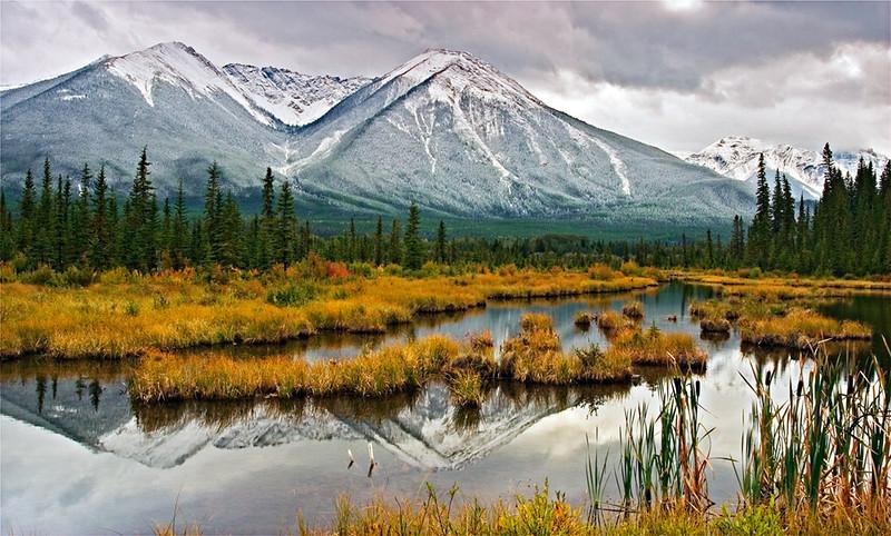 """""""Still March""""<br /> Banff National Park<br /> Banff, Canada"""