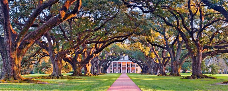"""Oak Alley""<br /> Oak Alley Plantation<br /> Vacherie, LA"