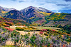"""Mountain of Color""<br /> San Juan Mountains<br /> Ouray, CO"