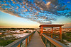 """Dune Boardwalk""<br /> Deer Lake State Park<br /> Seagrove Beach, FL"