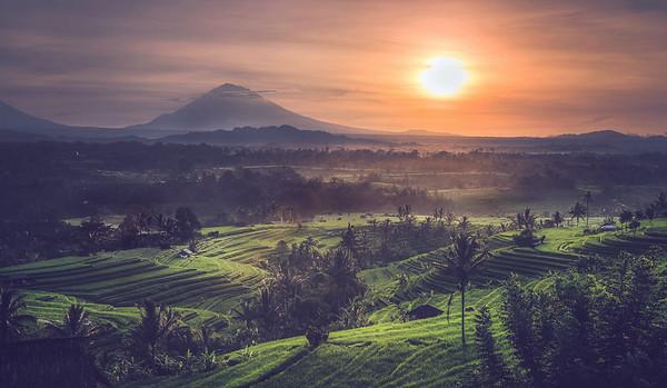 Jatiwulih Sunrise Bali