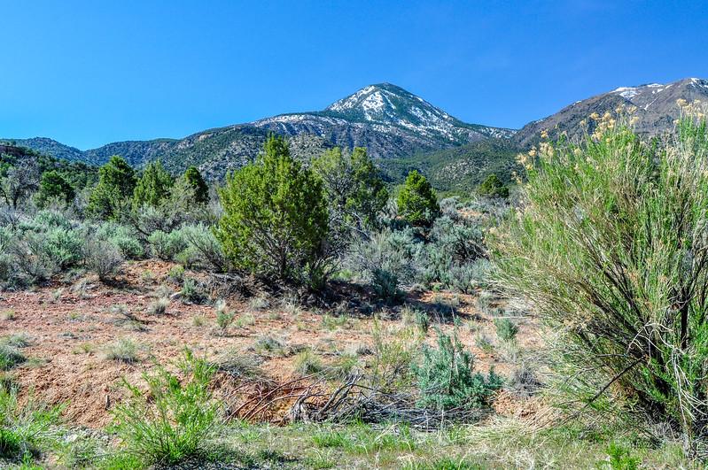 Mesa Verde Mountains