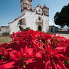 Teotitlán church.