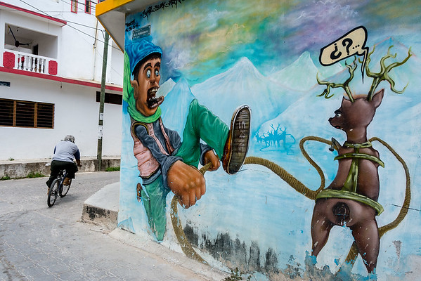 2015 Chiapas Street Art & Zapatista Art