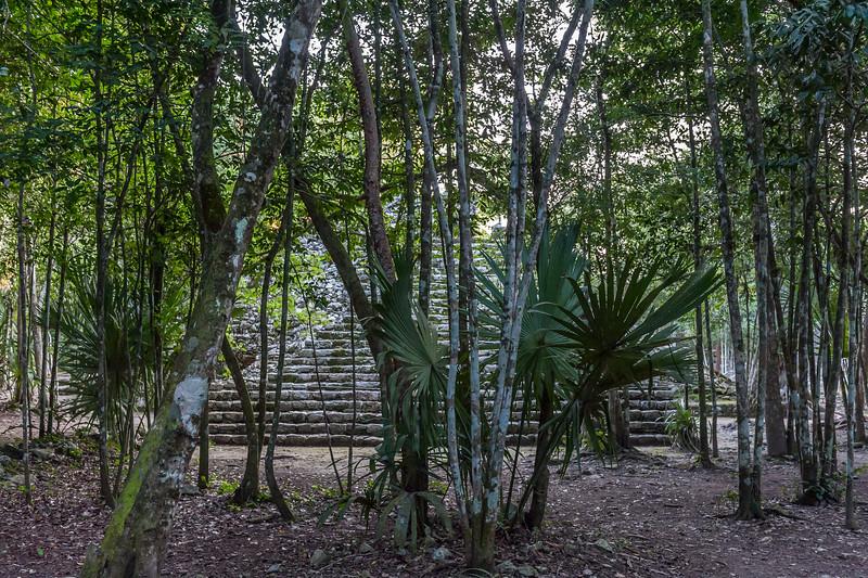 (Coba, Quintana Roo, MX - 01/15/16, 6:04:27 PM)