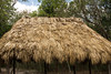 Straw-thatched roof covering a shelter