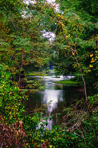 Driftwood River
