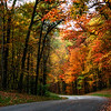 Autumn Drive through Brown County State Park<br /> Nashville, Indiana