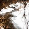 Winding Little Creek