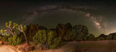 Milky Way Arch over a Live Oak in Joshua Tree.