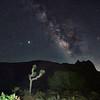 Joshua Tree and the Milky Way