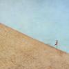 Running Down the Dune~