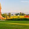 Long Shadows & the Neighboring Farm