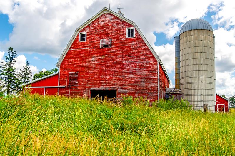 Red Barn & Tall Grassy Field