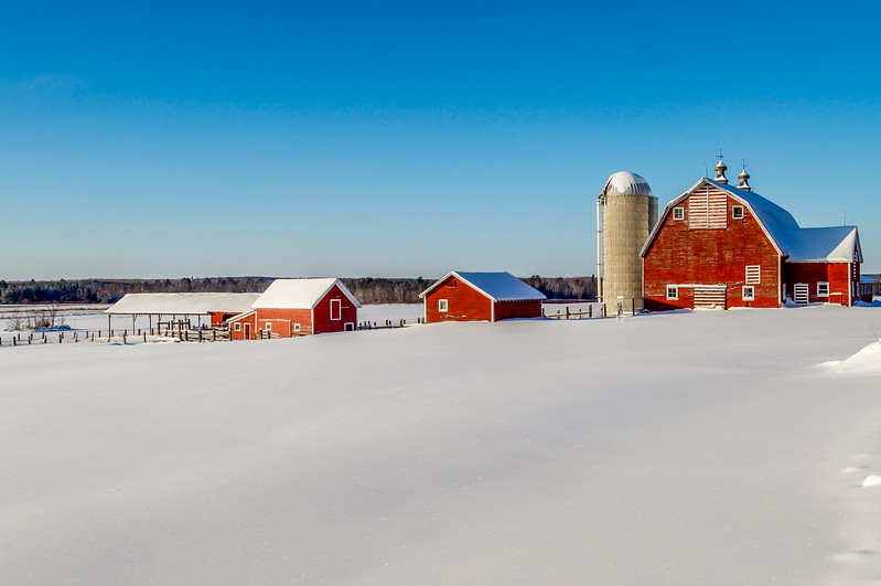 Snowy Pasture and the Red Barn
