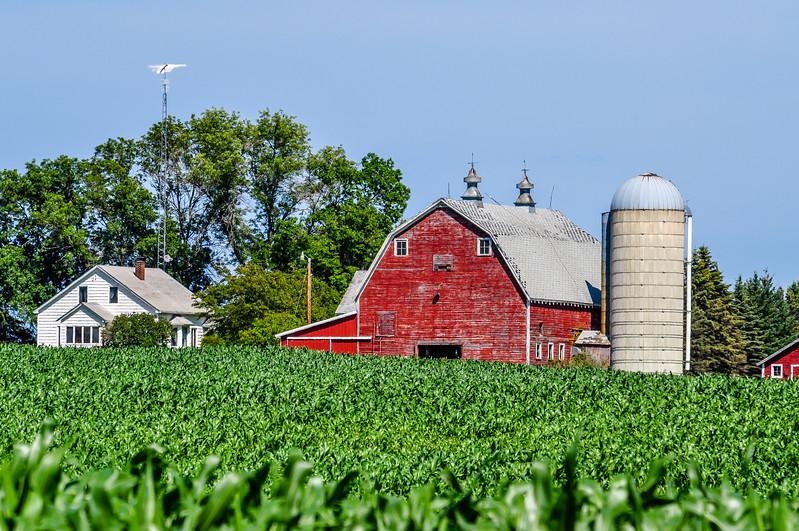 Anderson Farm Through the Corn