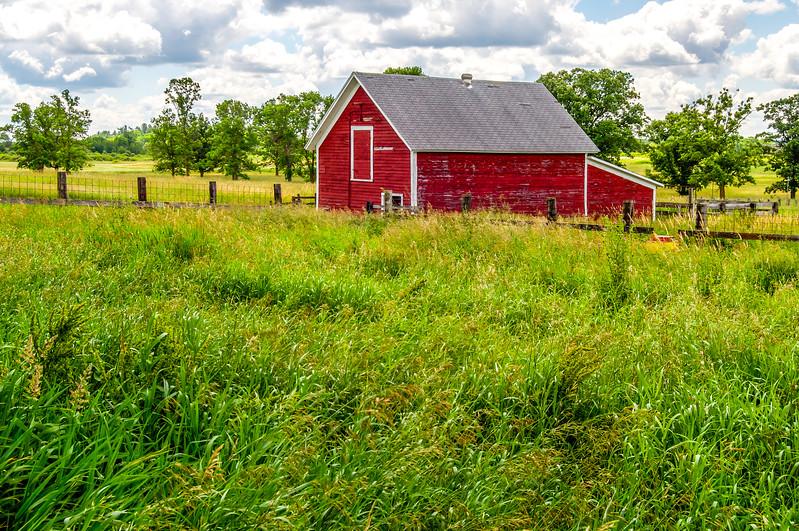 Grassy Pasture & Outbuilding