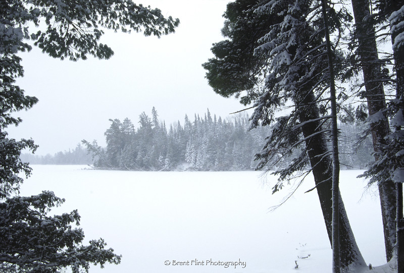 S.3095 - Coon Lake in winter, Scenic State Park, MN.