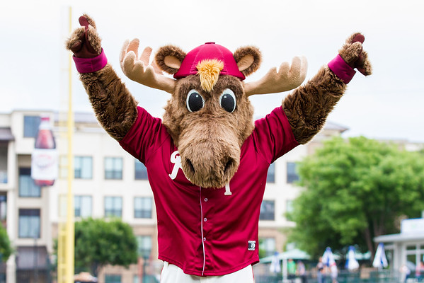 Frisco RoughRiders mascot 'Bull Moose' performs on the field before a game against the Midland RockHounds at Dr. Pepper Ballpark in Frisco, Texas, Sunday, May 8, 2016. (Photo by Sam Hodde)