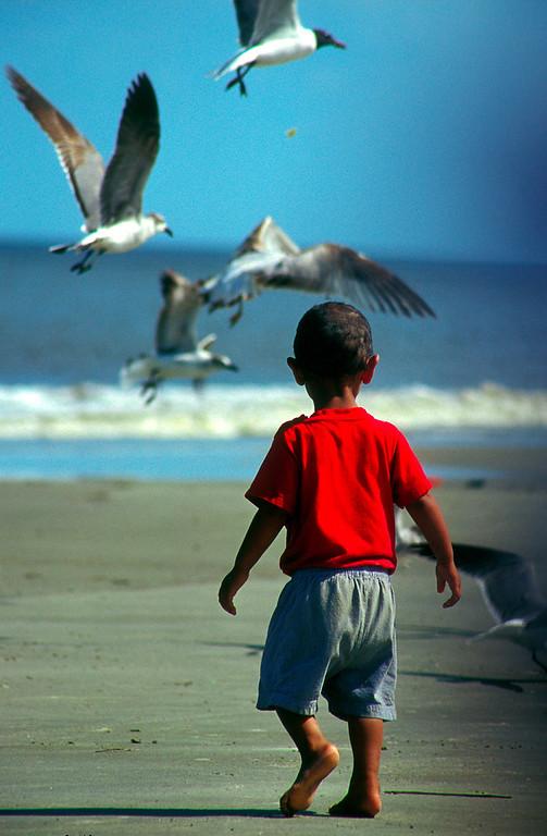 ColinRuggieroPhoto_Little_Boy_and_Gulls