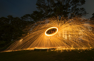 Steelwool Shields