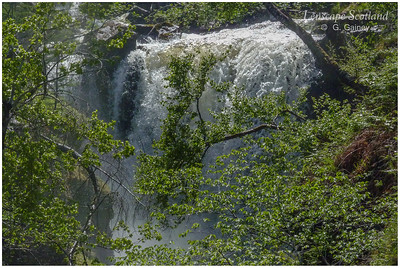 Victoria Falls, Slattadale, Loch Maree (1)