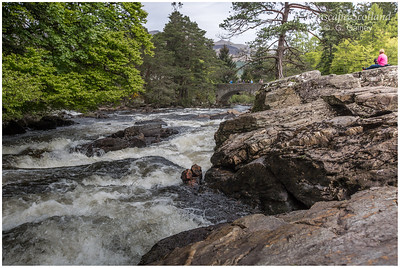 Falls of Dochart, Killin (2)