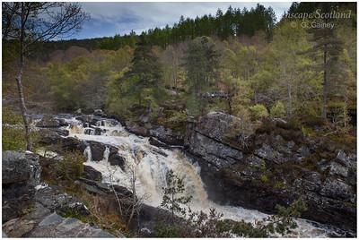 Rogie Falls, Contin, near Strathpeffer (1)