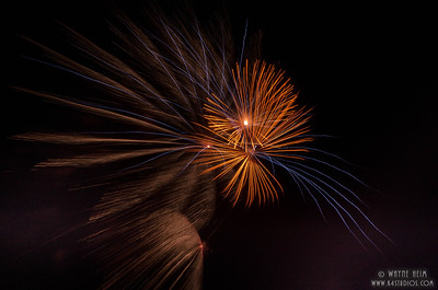 Gold Fireworks     Photography by Wayne Heim