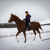 Horseback 1