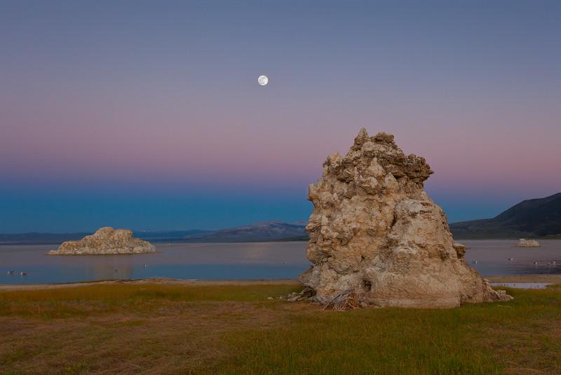Mono Lake County Park Tufas with Rising Full Moon