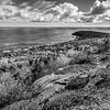 Acadia Sky