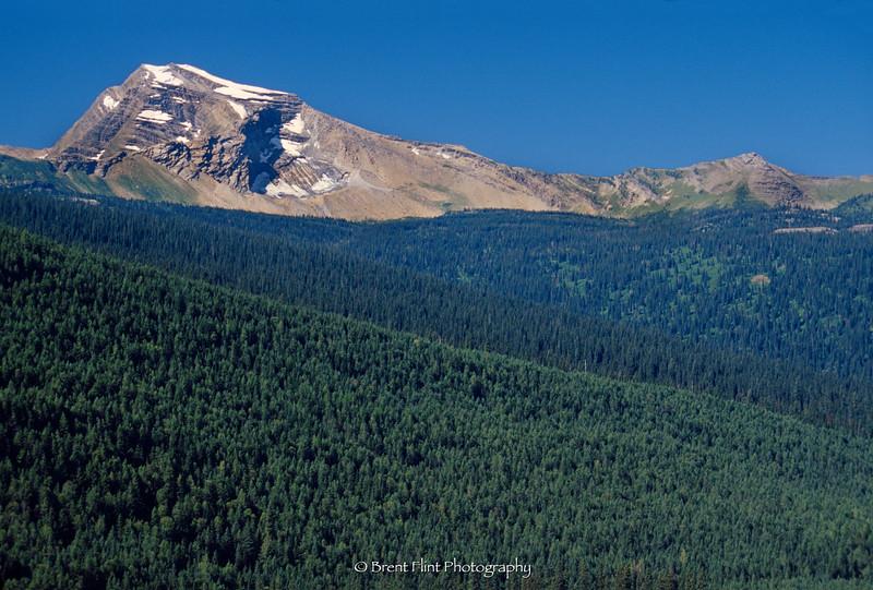 S.4257 - Heavens Peak, Glacier National Park, MT.