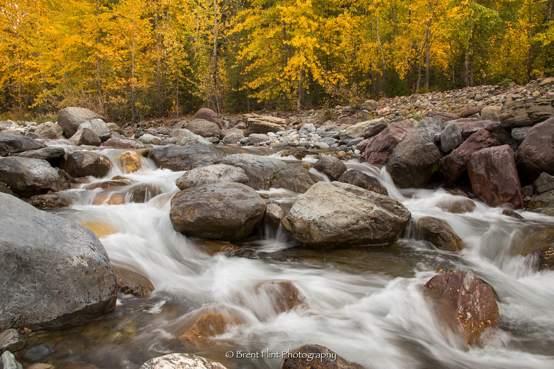 DF.4096 - Bear Creek in Autumn, Flathead National Forest, MT.