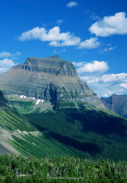 S.4445 - Going to the Sun Mountain, Glacier National Park, MT.