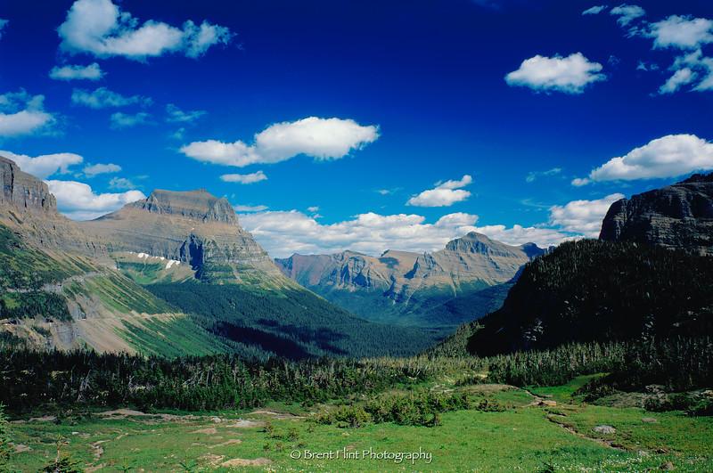 S.4444 - Logan Pass, Glacier National Park, MT.