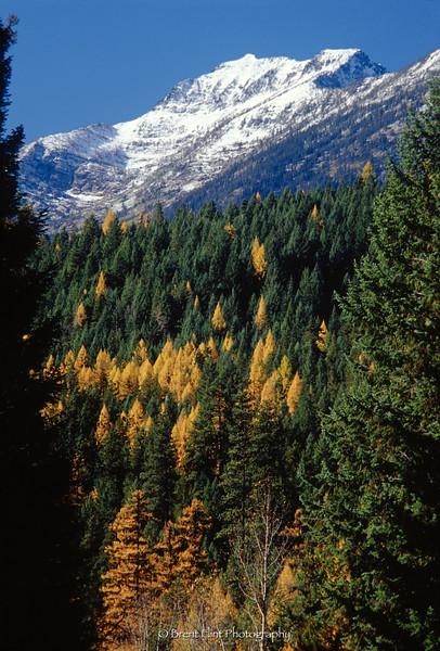S.4109 - Snowshoe Peak, Cabinet Mountains, Autumn, Kootenai National Forest, MT.
