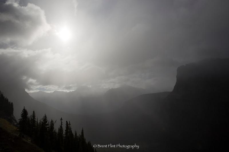 DF.4060 - Morning fog and mist, Logan Pass, Glacier National Park, MT.