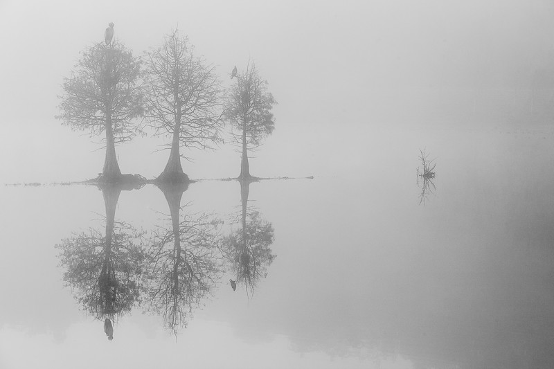 Mystic Morning on the Lake