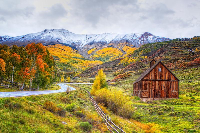 Rocky Mountain Roadside