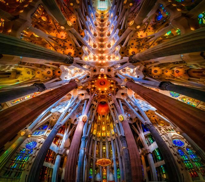 Gaudi's Majestic Ceiling, Part 2
