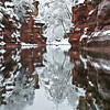 Oak Creek Reflection