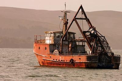 Barnacle barge.