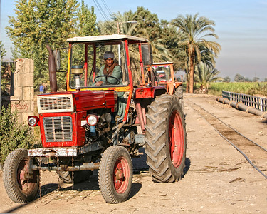 Farm on the Nile