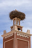 A stork on a huge nest on a mosque in a village in the Dades Valley. Smaller birds nesting below!