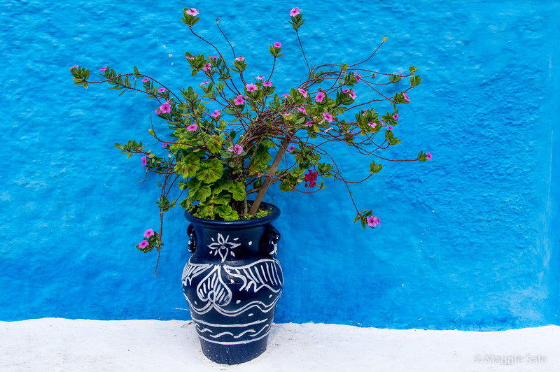 Pot in the narrow streets of the old walled town in Rabat.