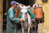 Gas delivery by horse in the souk at Fez.