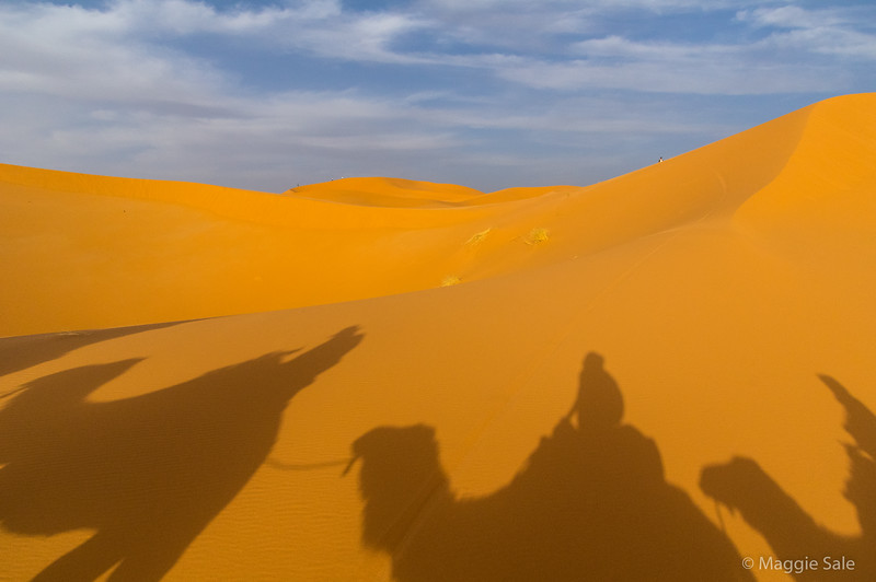 My camel reflection - not easy taking pictures with big camera in one hand and hanging on with the other, whilst walking! The sun came out briefly but went again before sunset.
